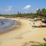 10 Amazing Things To Do In Goa This Year