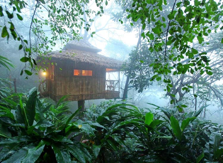 Indulge in unforgettable memories with top experiences in Kerala