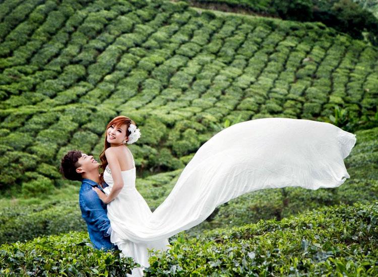 Munnar honeymoon tour