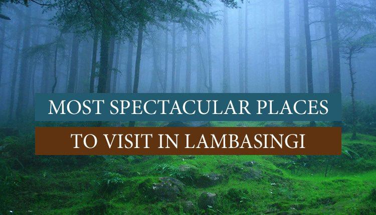 Visit these places in Lambasingi