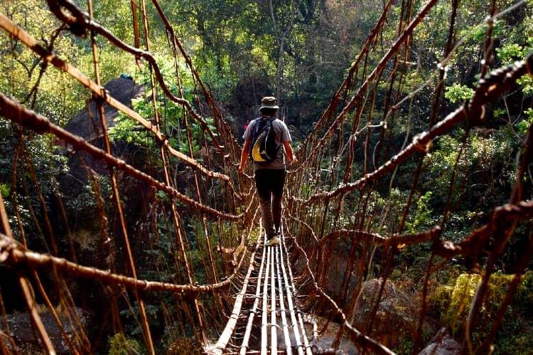 Honeymoon couples must experience the living route bridge of Cherrapunji
