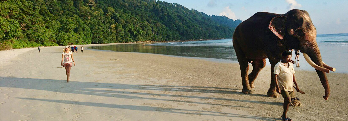 https://www.tourism-of-india.com/pictures/besttimetovisit/best-time-to-visit-andaman-slider-14