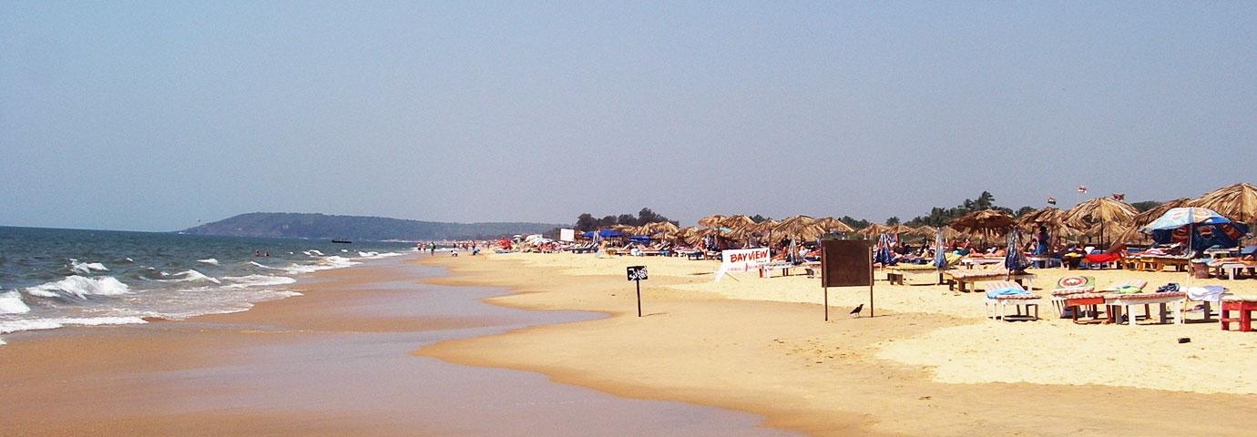 Candolim Beach, Goa - Things to do in Goa